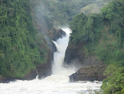 Murchison Falls - Uganda Safari
